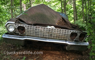 After 40 years the Junkyard Life team haul out this classic Chevy.
