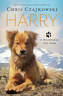 https://www.amazon.com/Harry-Wilderness-Saga-Chris-Czajkowski-ebook/dp/B0755MZZH8/ref=sr_1_2?ie=UTF8&qid=1506971212&sr=8-2&keywords=harry+chris