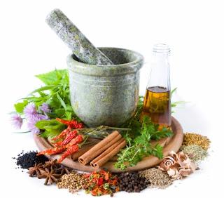 Kembangkan Obat Herbal, Kegiatan Ekstrakurikuler Murid SD di Koto Panjang