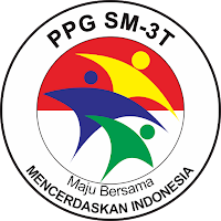 ppg SM-3T