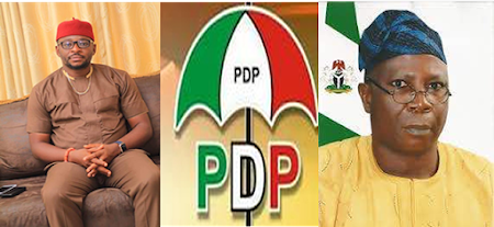 PDP: The Imperative Alternative: My Concern In The Forthcoming National Party Convention- Chinedu Eya