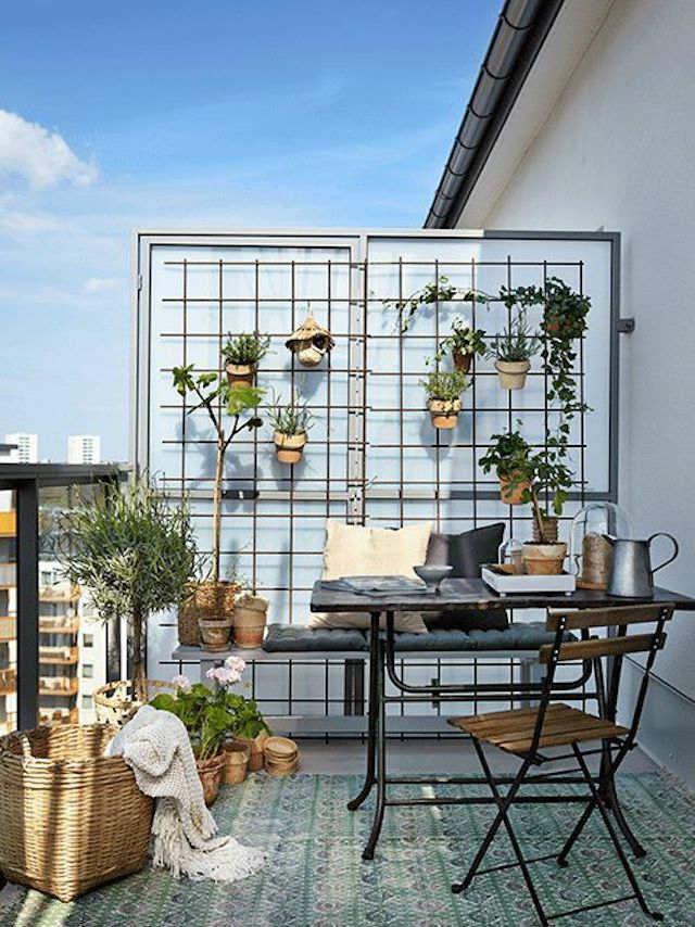 Balcón con malla metálica y plantas