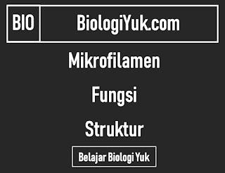 Mikrofilamen: Fungsi dan Struktur Lengkap
