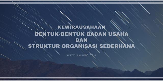 Bentuk-Bentuk Badan Usaha Dan Struktur Organisasi Sederhana - Mario Bd