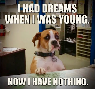 Funny I Had Dreams Dog Picture