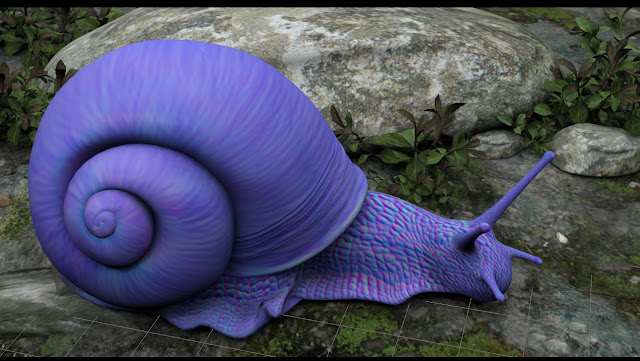 violet snail, ,Janthina janthina,