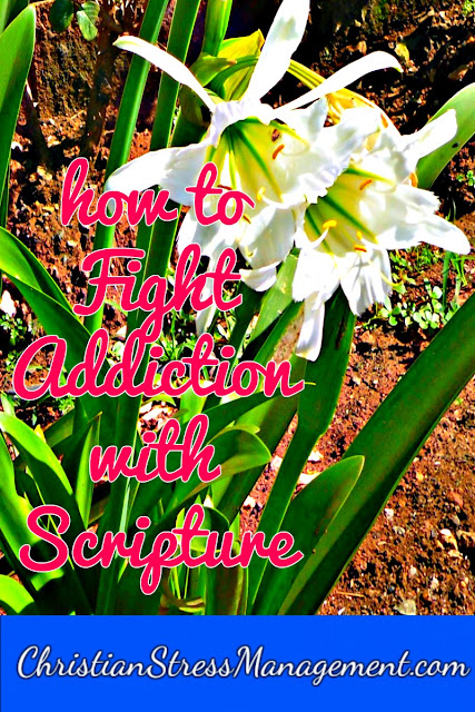 How to fight addiction with Scripture