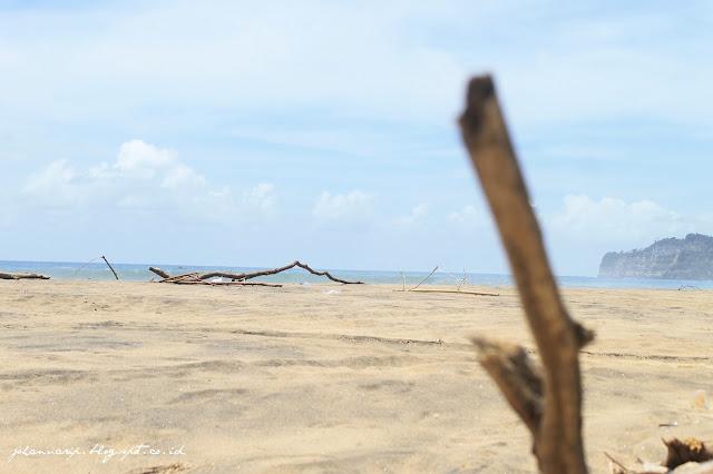 Wisata Pantai 'Sepi' di Tulungagung? Pantai Dlodo Bisa Jadi Pilihan Kamu!