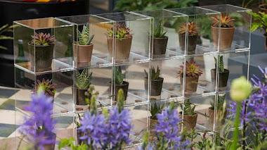 Algunos detalles (y plantas) en RHS Malvern Spring Festival para llevarse a casa