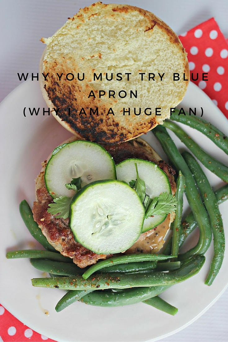 Blue apron zucchini enchilada