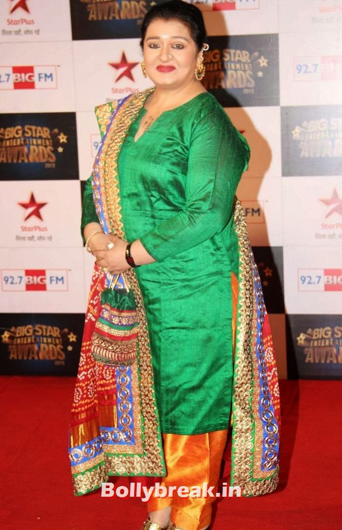 Apara Mehta, Tv babes Sizzle on Big Star Entertainment Awards 2013 Red Carpet