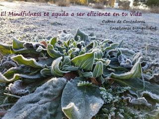 Silencia los pensamientos con Mindfulness en Leganés