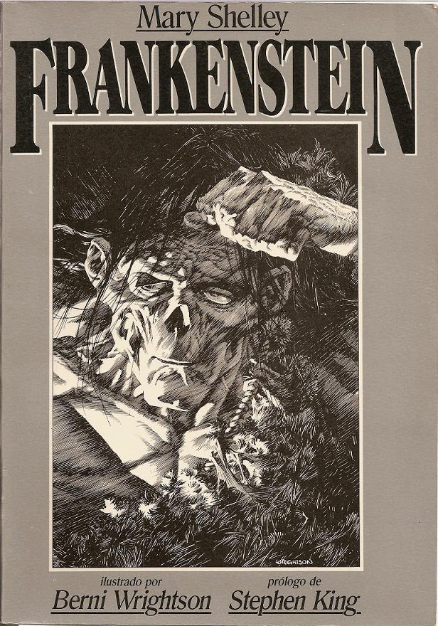 a critical analysis of mary shelleys frankenstein In which john green teaches you about mary shelley's novel, frankenstein sure, you know frankenstein the cultural phenomenon, but how much do you know about the novel that started it all.