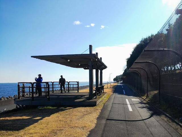 若洲海浜公園 サイクリングロード