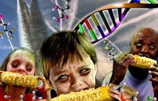 Chemtrails y la transferencia horizontal de genes – La conexión con los transgénicos.