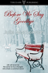 before we say goodbye, julie maclennan, train book, train fiction, train novel, strangers novel