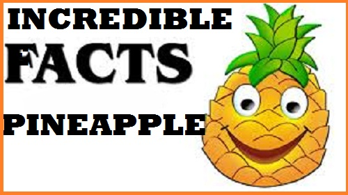 top-pineapple-facts