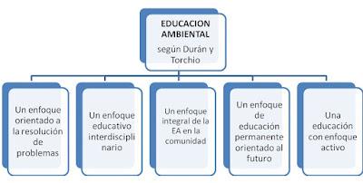 Definición Educación Ambiental