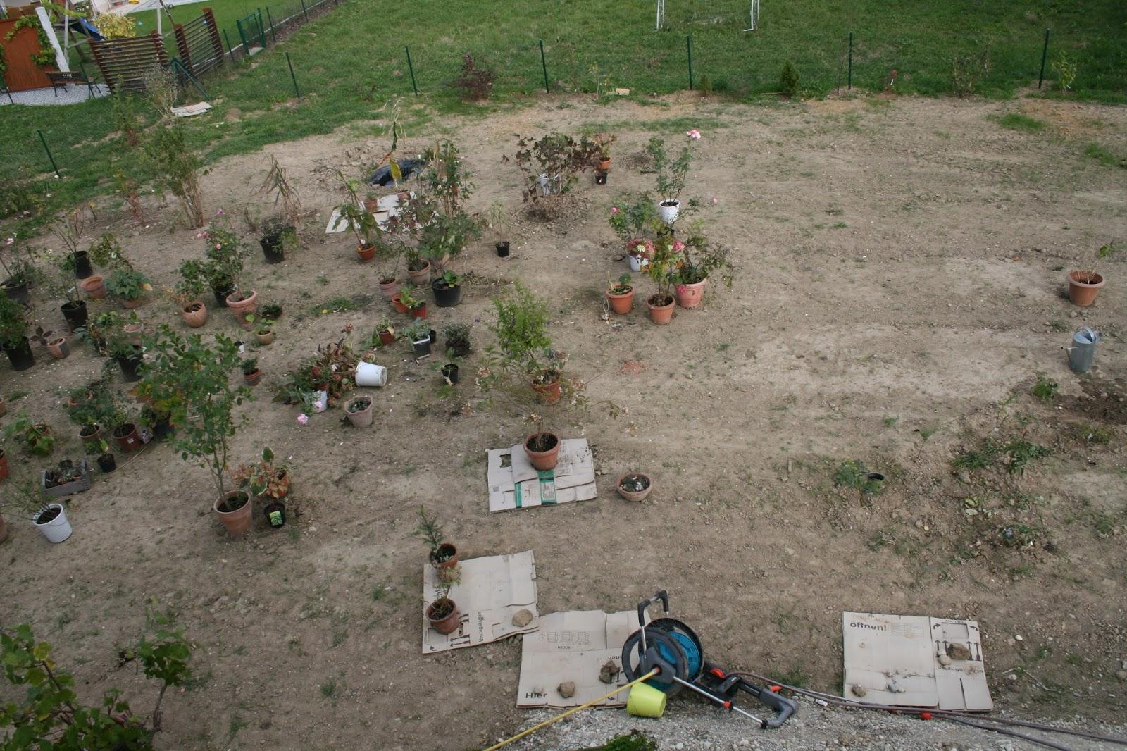 Unser Haus und Gartentraum: Garten 2