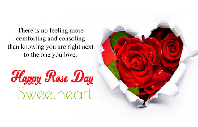 Happy rose Day Images with Love