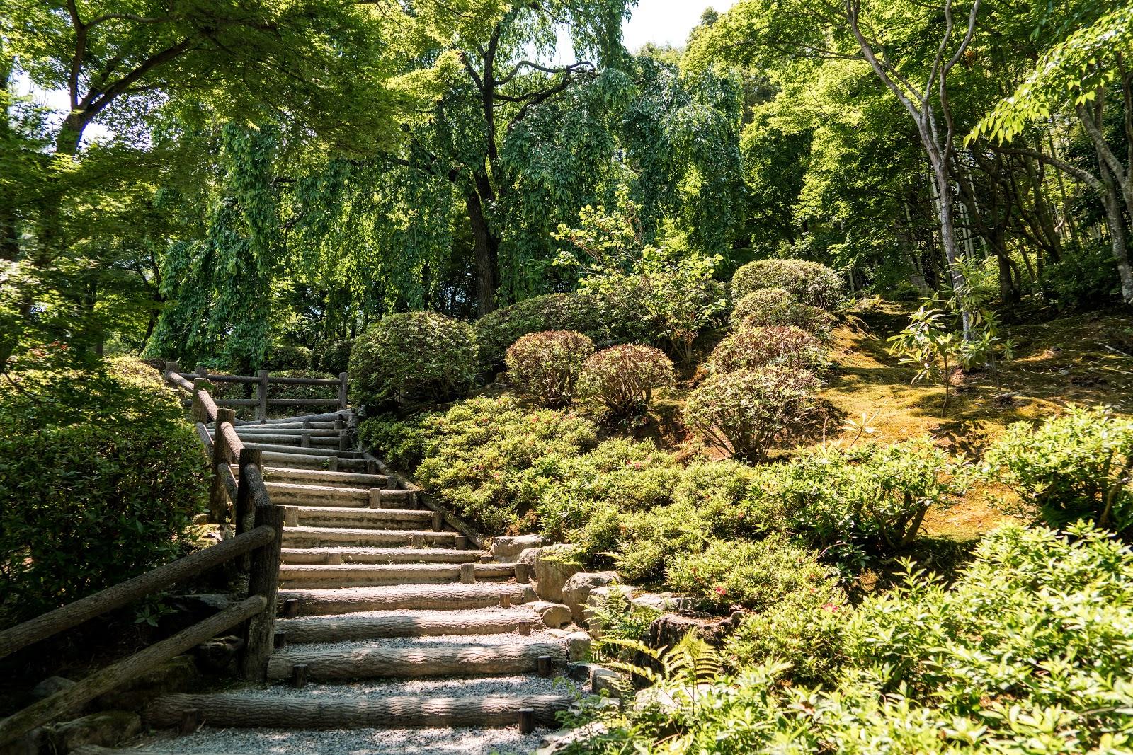 嵐山の木々が生い茂る公園の階段の小道
