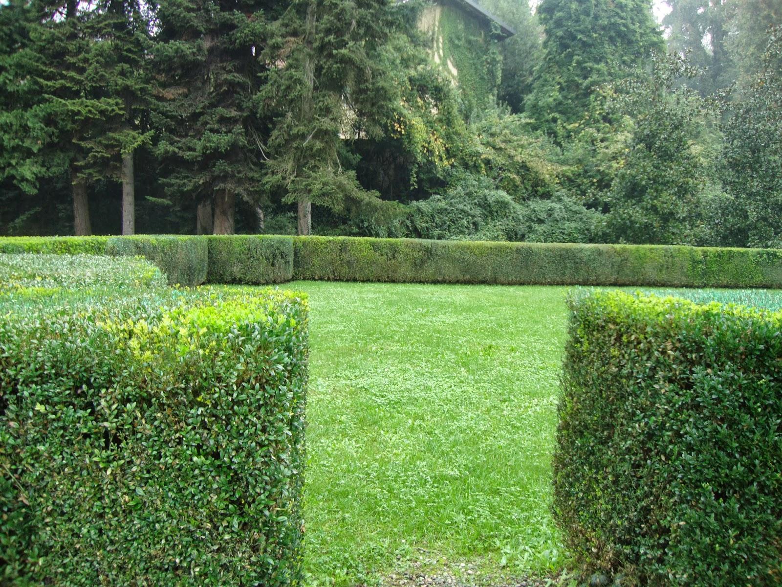 un piccolo giardino in città: i giardini cinquecenteschi di villa ... - Piccolo Giardino Allitaliana