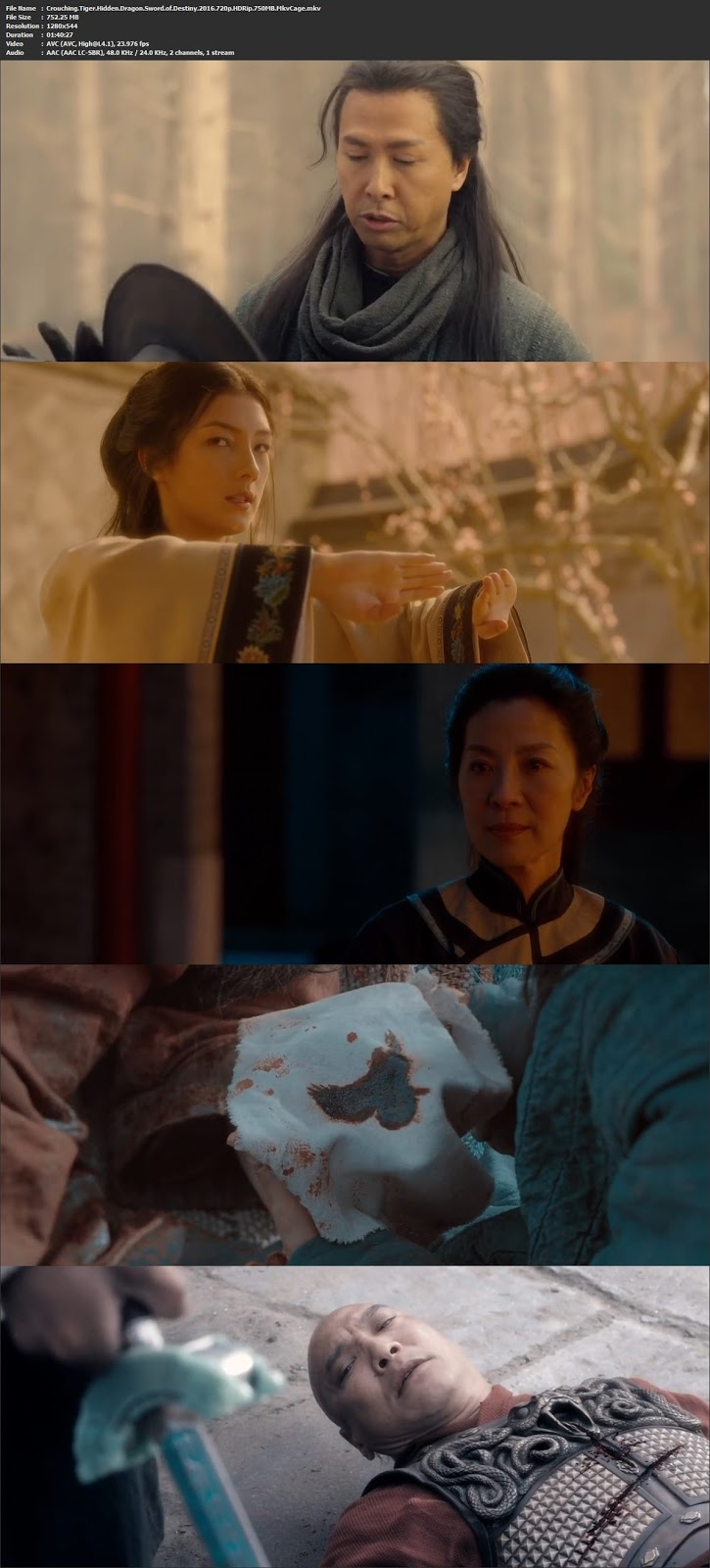 Crouching Tiger, Hidden Dragon: Sword of Destiny (2016) 720p from