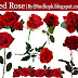 Red Rose Png Flower Image Free Download