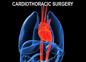 Cardiovascular & Thoracic