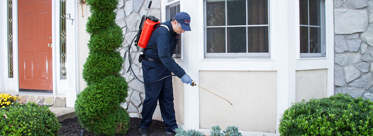 Keeping Your Home Pest Free is Our Responsibility