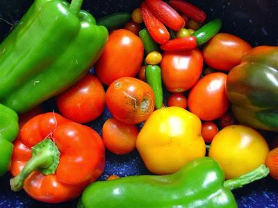 الخضروات لها فوائد كبيرة في تقليل السرطان