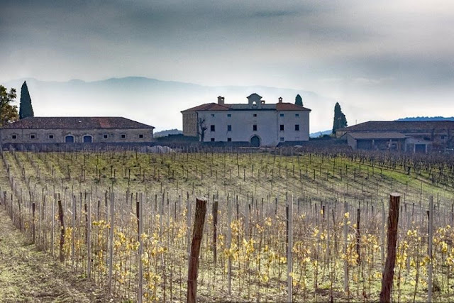 Vinari u Istri @ www.poistri.eu