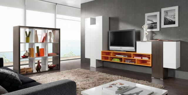 Cupboard Designs For Living Room