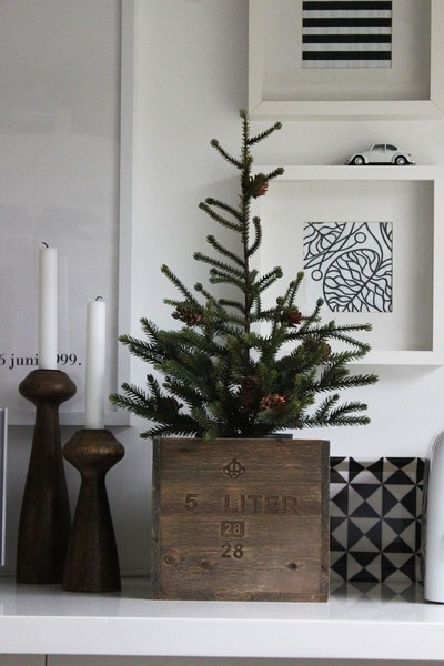 10 Simple Accent Trees For Christmas