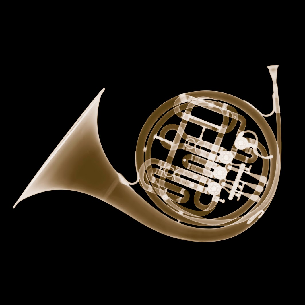 09-French-Horn-Nick-Veasey-X-ray-Images-Mechanical-Musical-www-designstack-co