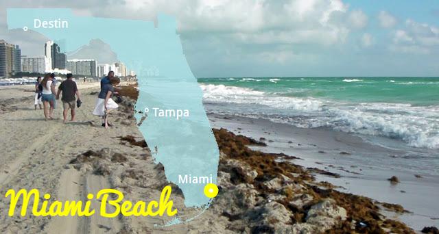 Die beliebtsten Strände Florida's: Region Miami