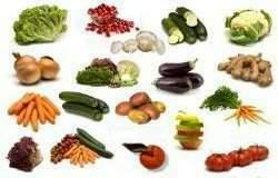 Materias primas animales y vegetales tecnicas de un buen for Plantas hortalizas ejemplos