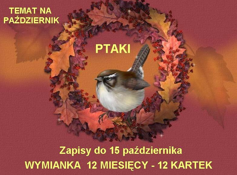 http://misiowyzakatek.blogspot.com/2014/11/podsumowanie-wymianki-pazdziernikowej.html