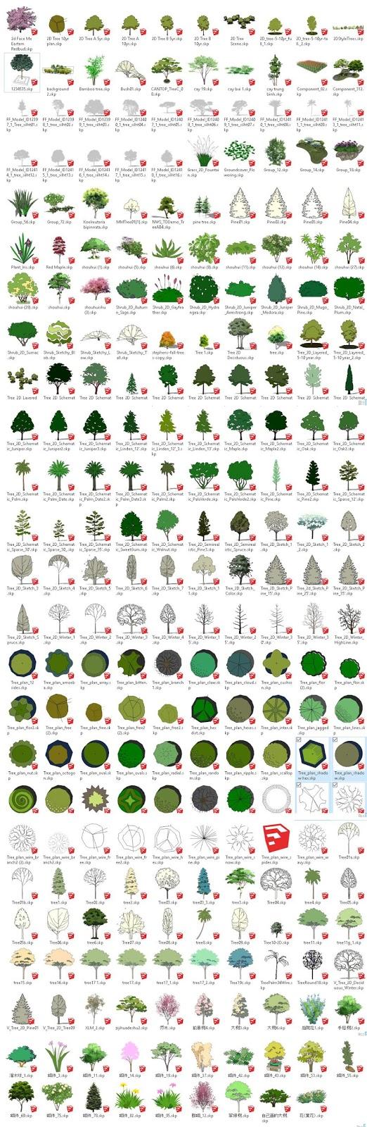 Sketchup Trees 2d