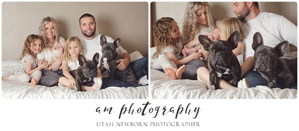 newborn and family photography session with dogs