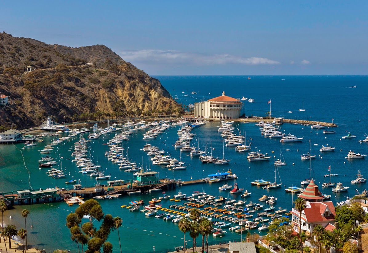Socal law blog appearing in court on catalina island for Catalina bay