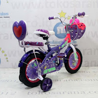 Sepeda Anak Golden Caramel CTB 12 Inci