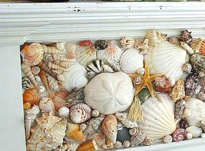 Sea Shell Mosaic Idea