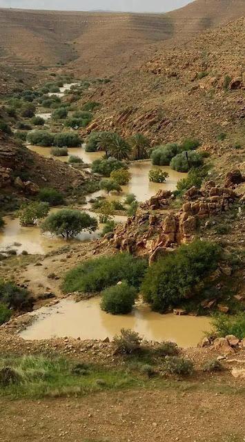 حسن استغلال موارد الماء النازلة من الأمطار