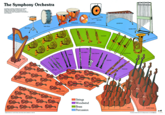 Luisa @ Glenbrae School: Parts of an Orchestra