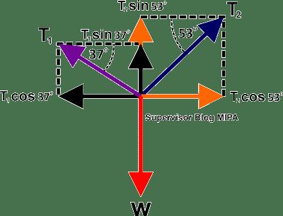 contoh soal dan pembahasan Hukum Newton pada Kesetimbangan Tali