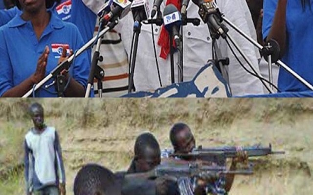 NPP importing arms and ammunition - NDC Chairman