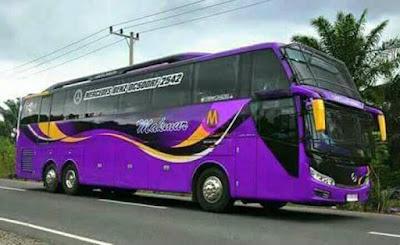 kumpulan foto armada bus makmur halmahera terbaru