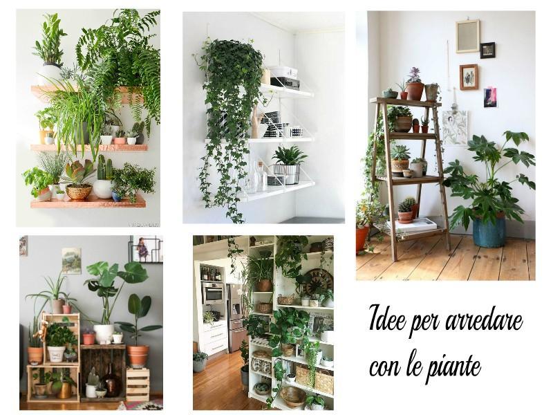 Piante In Casa Idee : Idee per arredare con le piante donneinpink magazine