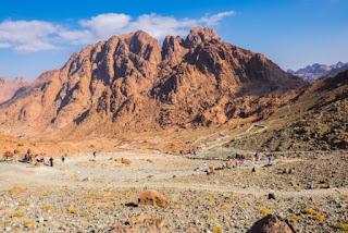 6. Gurun Sinai